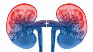 Podcast 71: Diabetic Kidney Disease